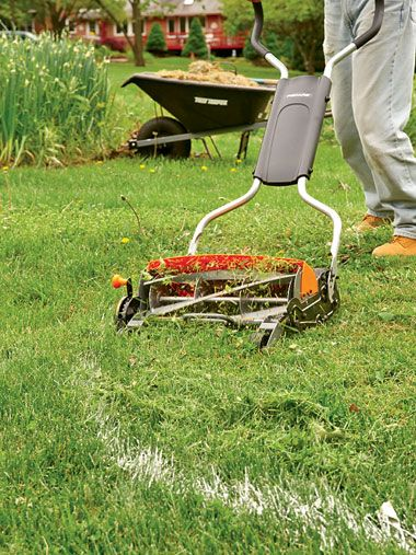 The Secret To Converting Lawn To Garden http://www.rodalesorganiclife.com