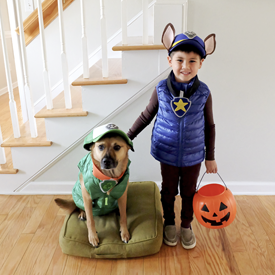 DIY paw patrol costume - Spiderman halloween costume, Paw patrol costume, Baby costumes, Paw patrol, Diy halloween costumes for kids, Kids costumes - Instructions for how to create paw patrol costume
