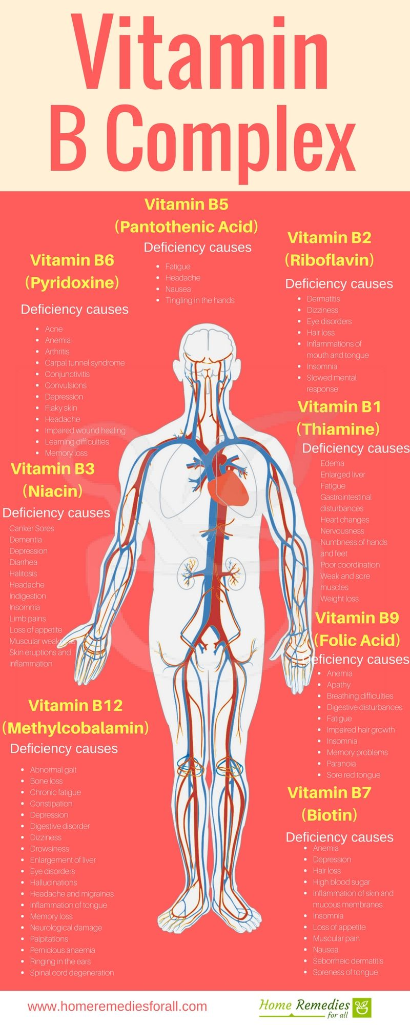 Vitamins for the heart and blood vessels will help to live more than a century 61
