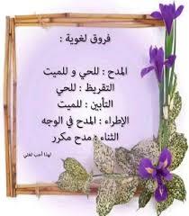 فروق لغوية العلوي ون Alawites Facebook Place Card Holders Salaah Place Cards