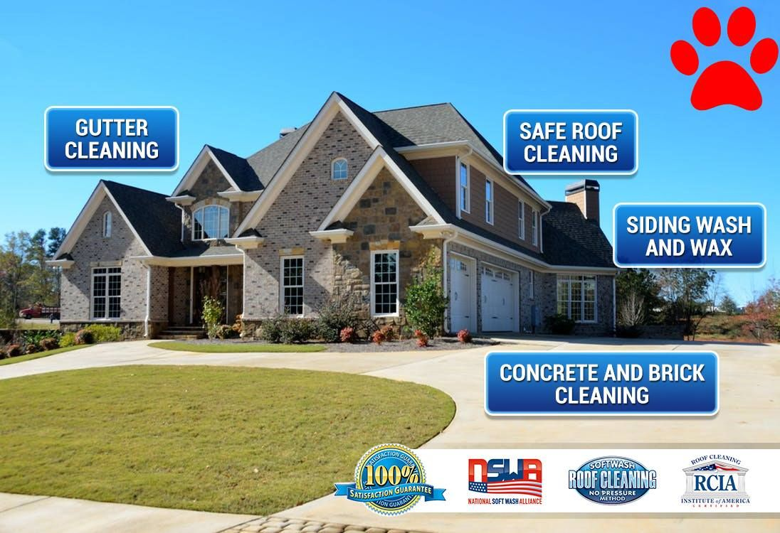 Pin by GUTTERDOGS Affordable Soft Power Washing & Safe