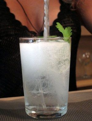How to Make the Perfect Gin & Tonic (Spanish Style): How to serve the perfect gin and tonic, Spanish style!