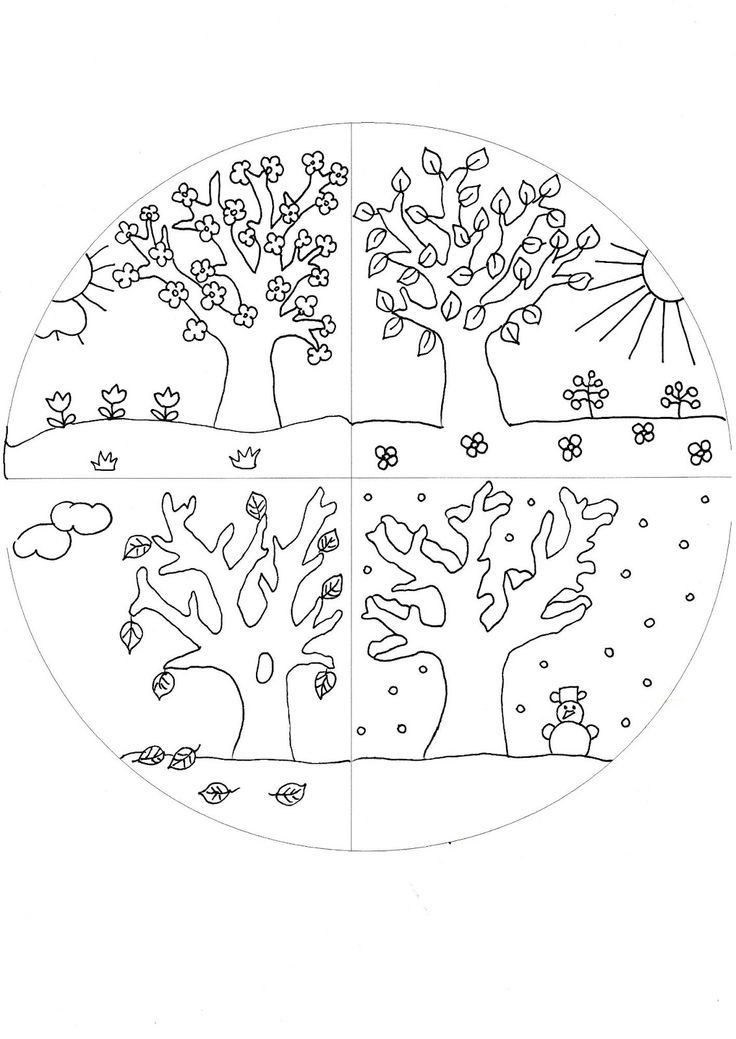 Ausmalbild Vier Jahreszeiten Baum   Aiquruguay