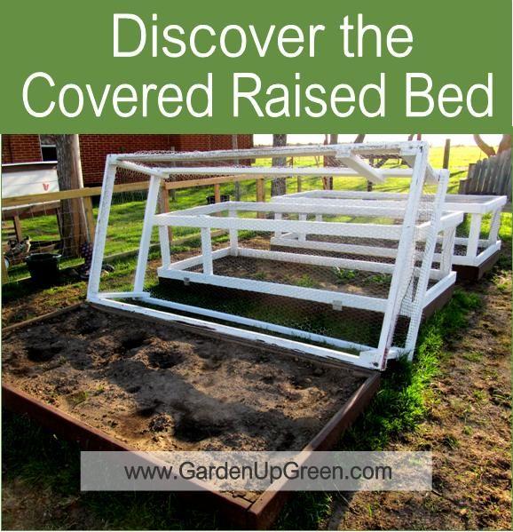 Raised Garden Beds, Building Raised