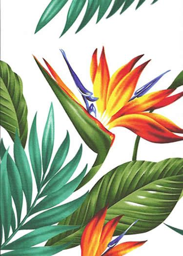Tropical Hawaiian Bird Of Paradise Flowers And Leafy Palm