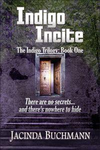 Enter To Win 50 Amazon Gift Card Book Indigo Indie Author Dissertation