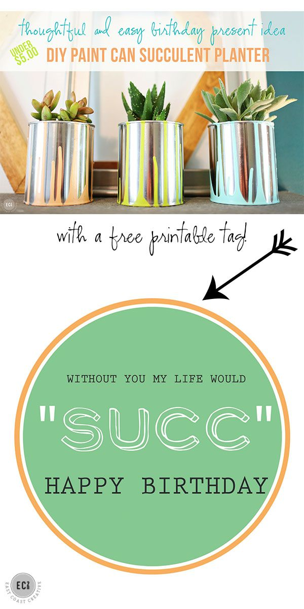 Thoughtful and easy diy birthday present idea using empty paint thoughtful and easy diy birthday present idea using empty paint cans paint and succulents negle Image collections