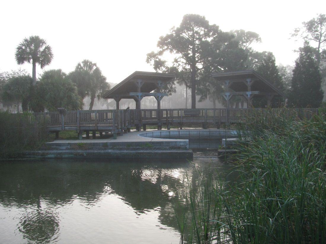 Wall springs park palm harbor fl florida pinterest palm and park
