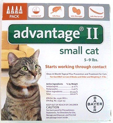 Advantage Ii For Cats 5 9 Lbs 4 Months Http Www Bestdiscountpetsupplies Com Advantage Ii For Cat Fleas Flea Control For Cats Flea Treatment For Kittens