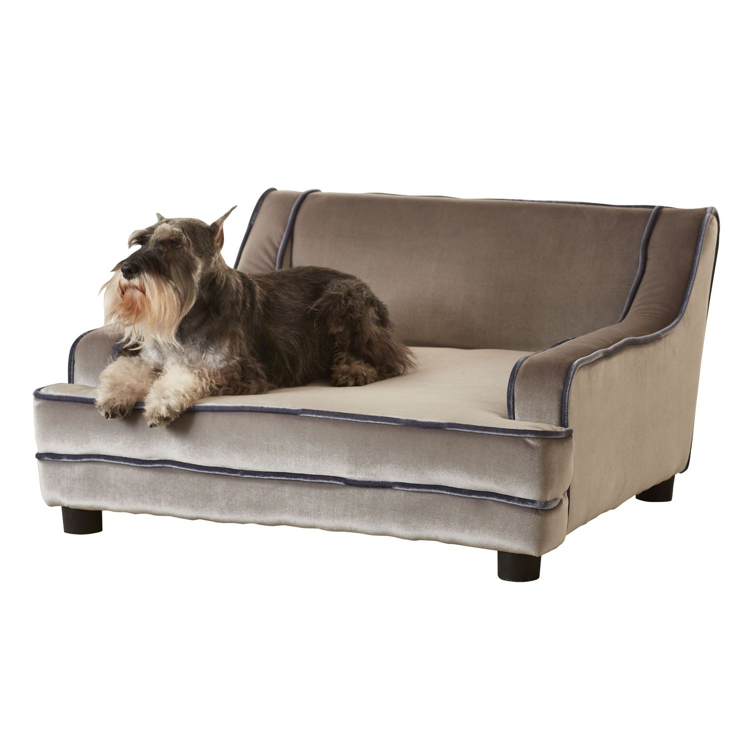 enchanted home pet mid century modern pet bed  four legged kids  - enchanted home pet mid century modern pet bed