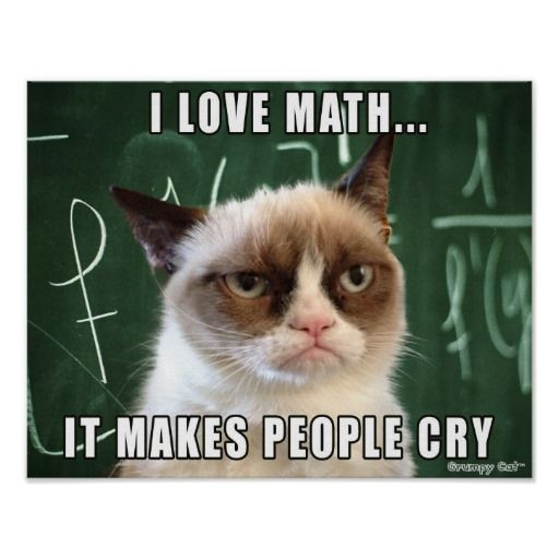 Grumpy Cat Poster- I love math it makes people cry Poster   Zazzle.com