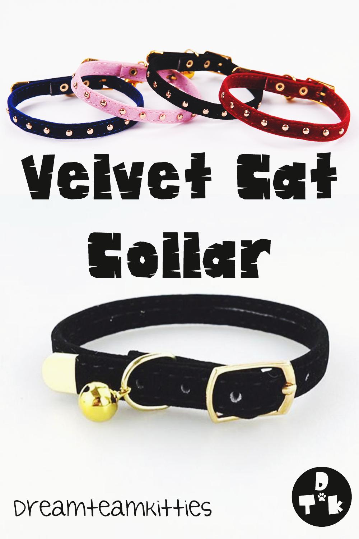 Velvet Cat Collar Cat Collars Kitten Care Cats