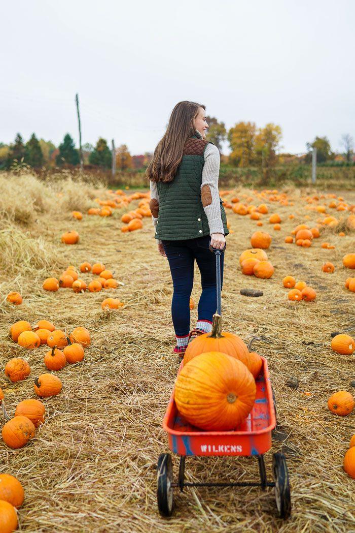 Pumpkin Picking Fashion Inspiration Oto 241 O Ropa