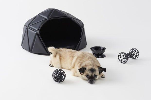 Nendo agora cria peças para cachorros