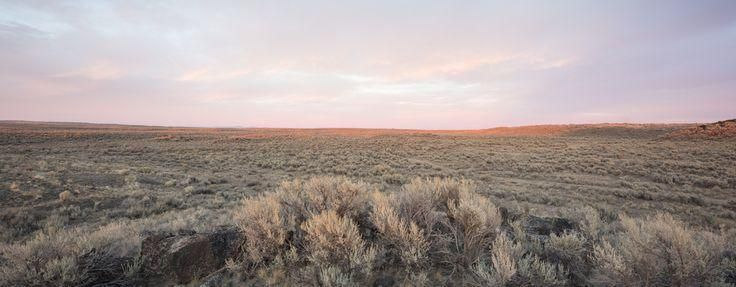 "#Eye  #great  #prairieLandscapePhotography  #prairies  #Reach  #sagebrush #these #great ""I can see these great sagebrush prairies, as far as the eye can reach"" – ...,"