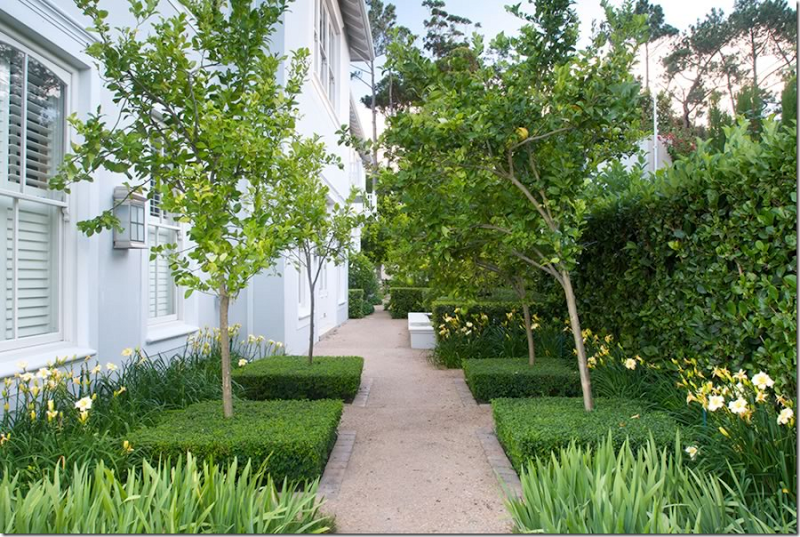 Line The Side Yard With Fruit Trees Southern Exposure Full Sun Landscape Design Landscaping Around Trees Garden Design Ideas Inspiration