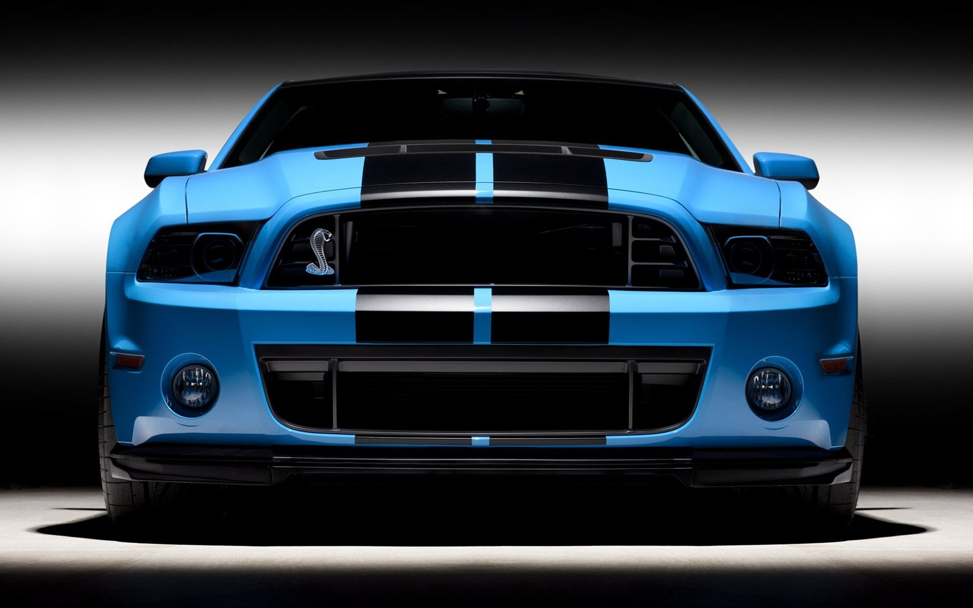 2013 Ford Shelby Gt500 Wallpapers Cas Wallpaper Hd Ford