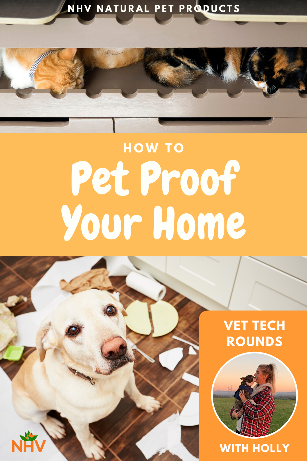 Vet Tech Rounds How To Pet Proof Your Home In 2020 Pet Proof Pets Healthy Pets