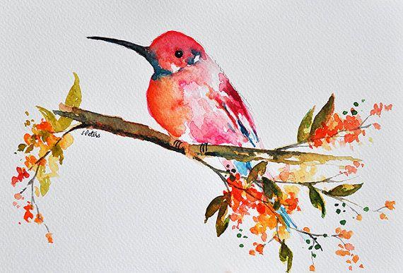 Oiseau Daquarelle Peinture Portrait De Colibri Couleur Oiseau En