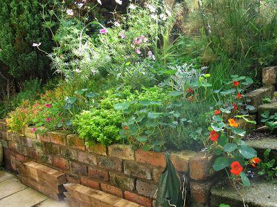 arte y jardinerÍa diseÑo de jardines: plantas aromÁticas. como