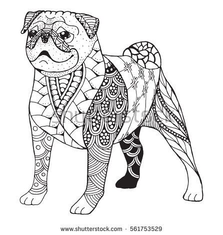 Pug dog zentangle stylized, vector, illustration, freehand pencil ...