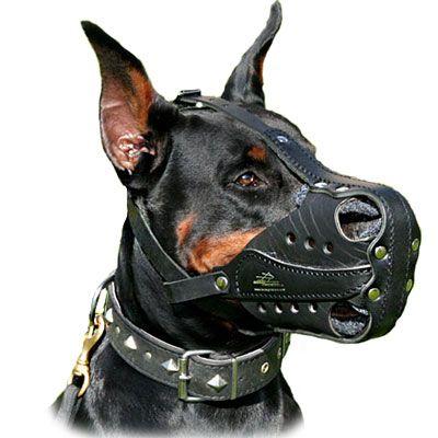 Doberman Muzzles Leather Dog K9