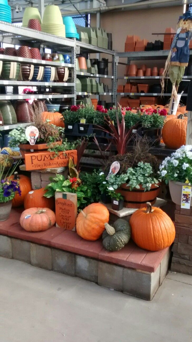 Fall At Lowes With Images Autumn Display Garden Shop Retail