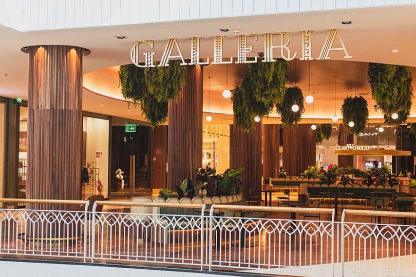 Norteshopping Inaugura Um Novo Espaço Exclusivo O Galleria Polo Ralph Lauren Polo Ralph Matosinhos
