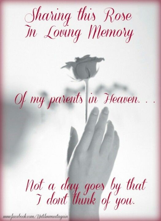 I Love You Mom And Pop Mom And Dad Quotes Mom In Heaven Miss My Mom