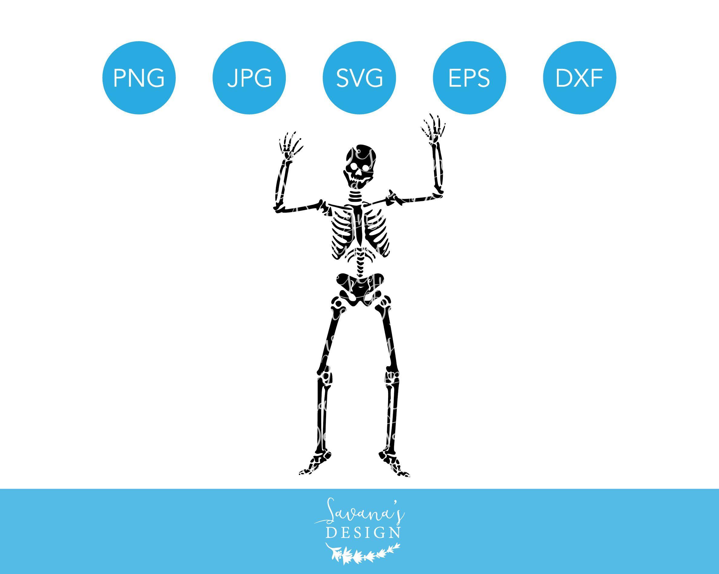 Skeleton SVG for Halloween! Only 1! printable