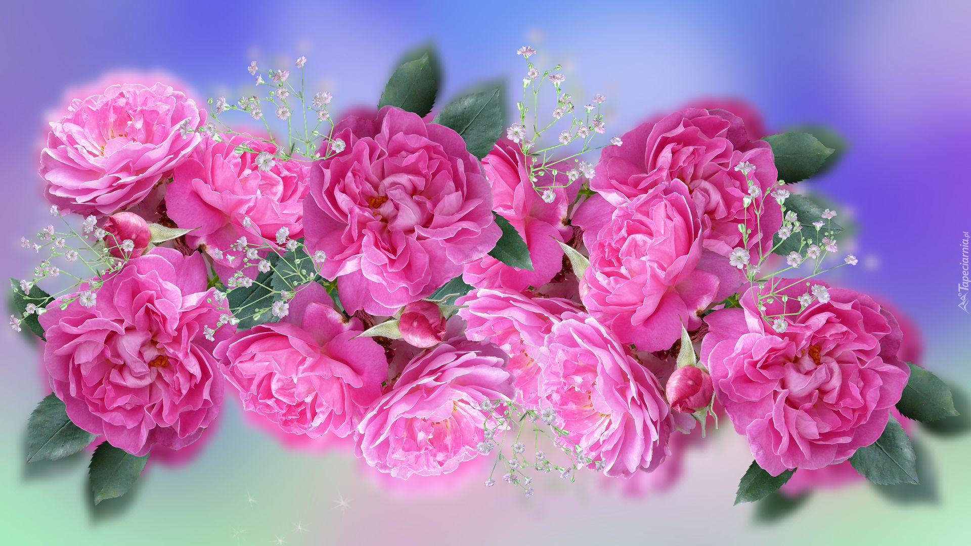 Kwiaty Roze Gipsowka Flowers Rose Make It Yourself