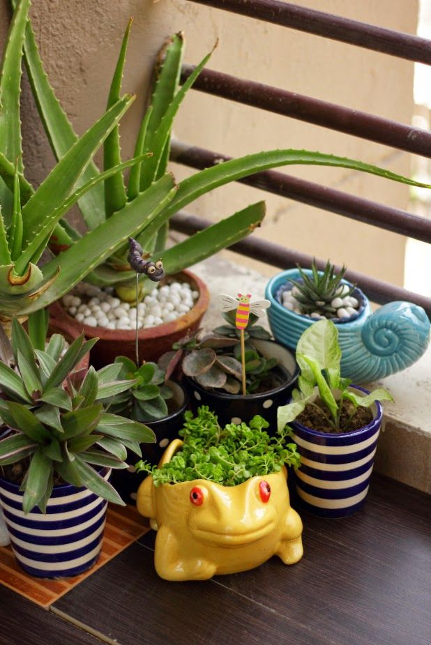 Small Balcony Garden For the Home Pinterest Small balcony