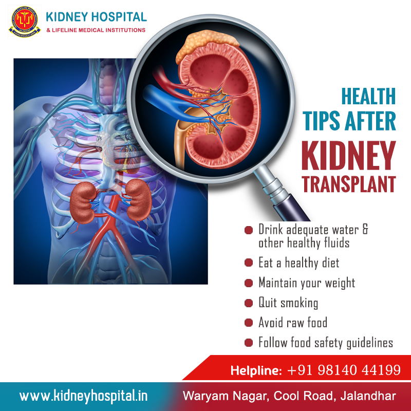 Following Your Doctor S Advice And Taking Some Dietary And Other Health Precautions Are Really Crucia Kidney Treatment Kidney Transplant Food Safety Guidelines