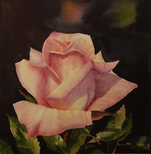 """Daily Paintworks - """"Light Pink Rose"""" - Original Fine Art for Sale - © Mary Anderson"""