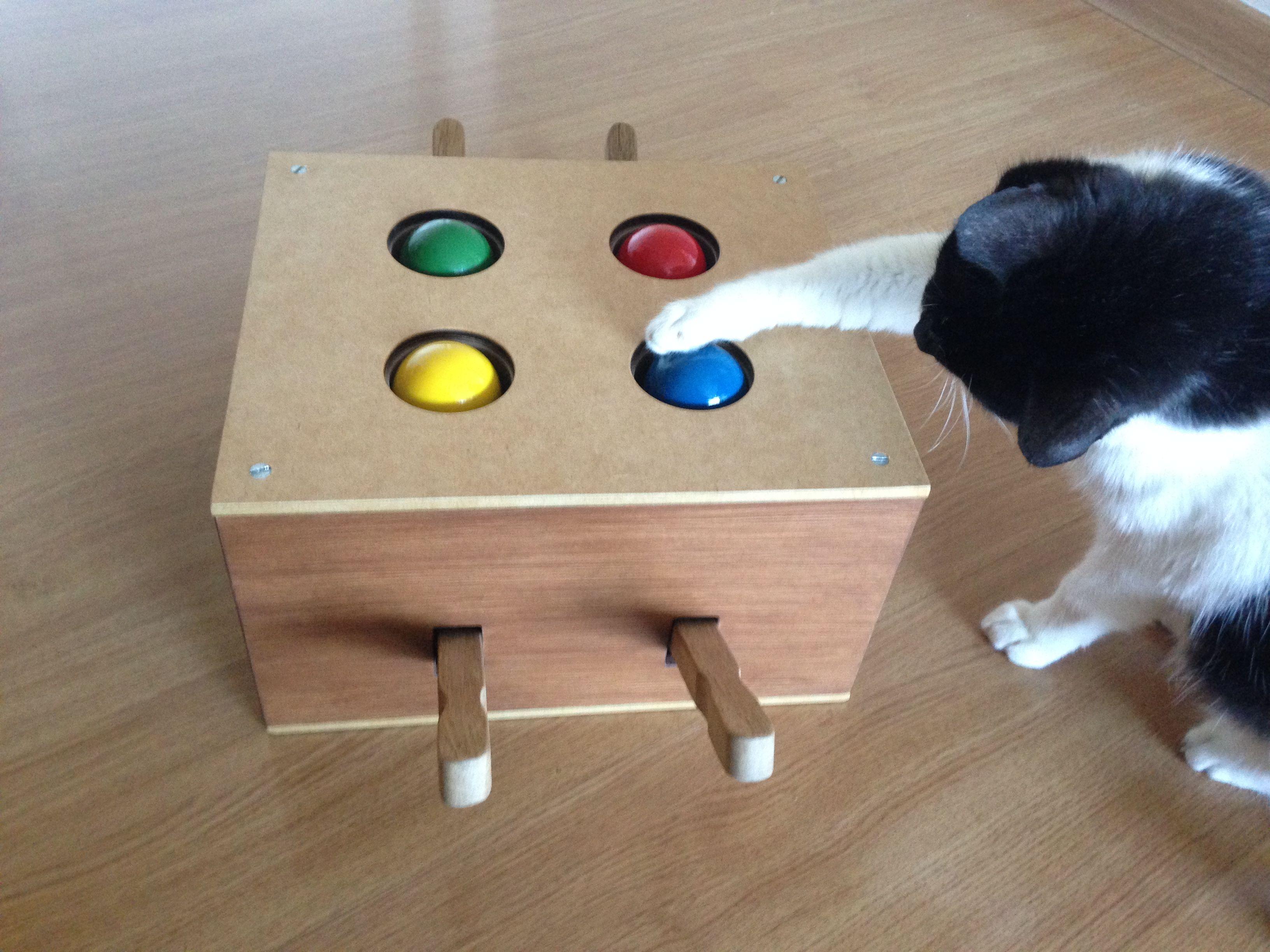 Brinquedo para gato - alavanca