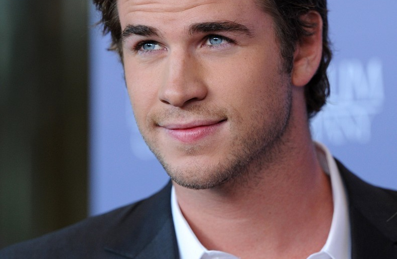 liam hemsworth brother