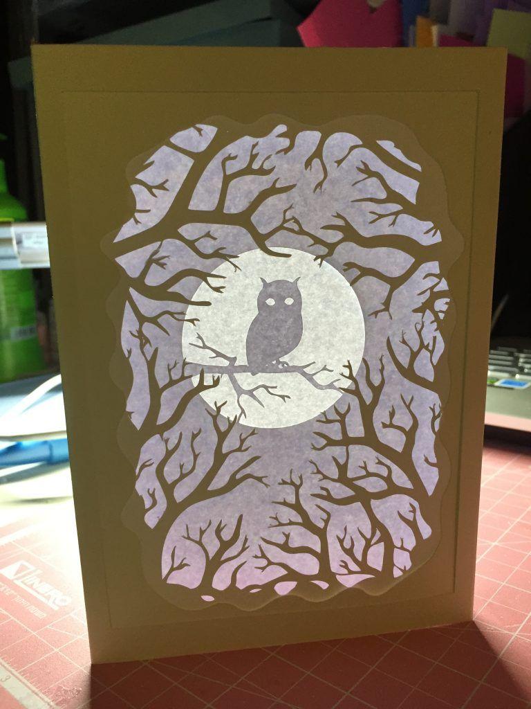 Owl Shadow Box Card For Autumn Shadow Box 3d Cards Cards