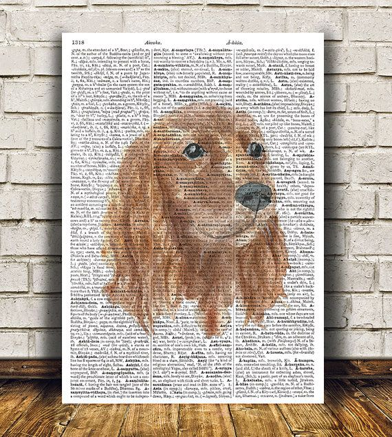 amazing cute dog decor gorgeous dog poster for your home and office rh pinterest co uk