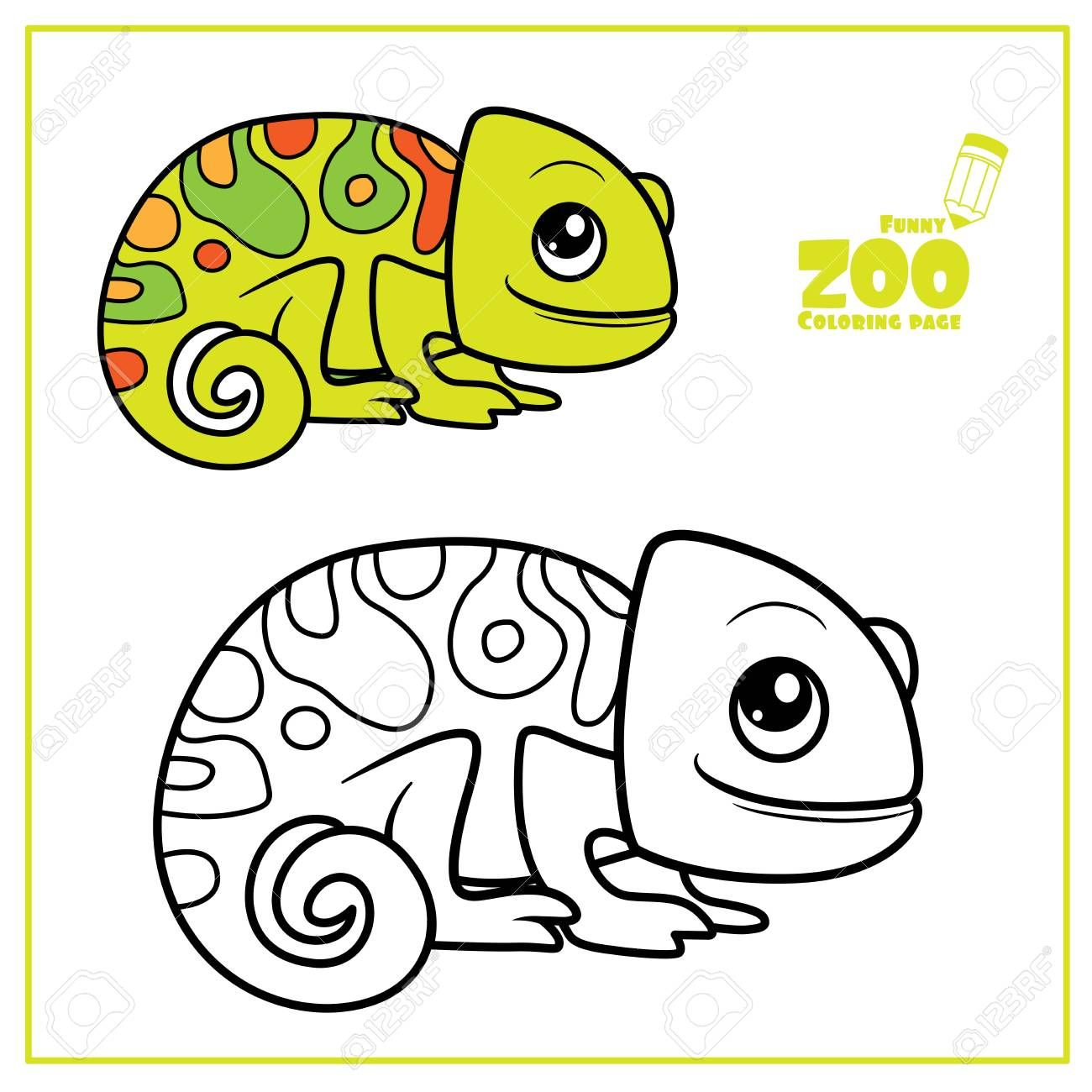 Cute Cartoon Little Chameleon Color And Outlined On A White For