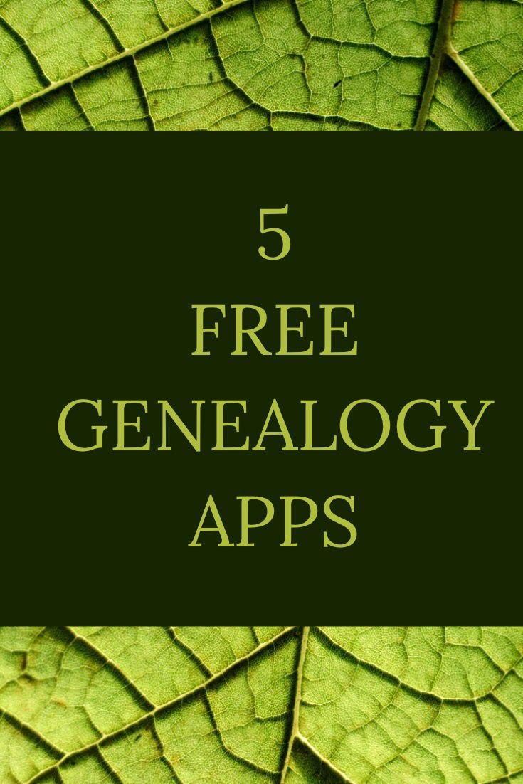 family tree apps powerhouses for on the go genealogy free