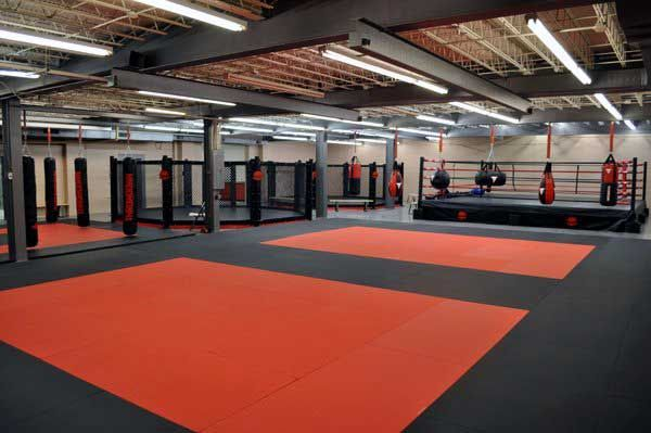 3d Octagon Wallpaper Pin By Leonardo Ciutto On Gym Training Space Awesome