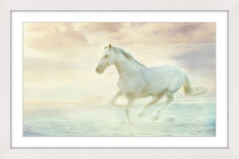 Galloping Through the Water - Marmont Hill