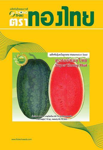 watermelon seeds thailand export to vietnam www