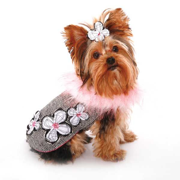 Dog in the Closet - Designer Dog Clothes, Small Dog Clothes, Dog T-Shirts, Wholesale Dog Clothes