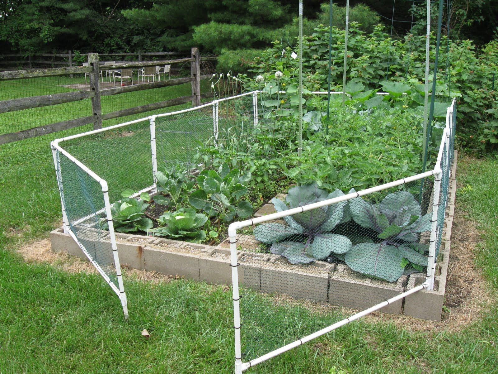 How To Build A Garden Fenced Vegetable Garden Cheap