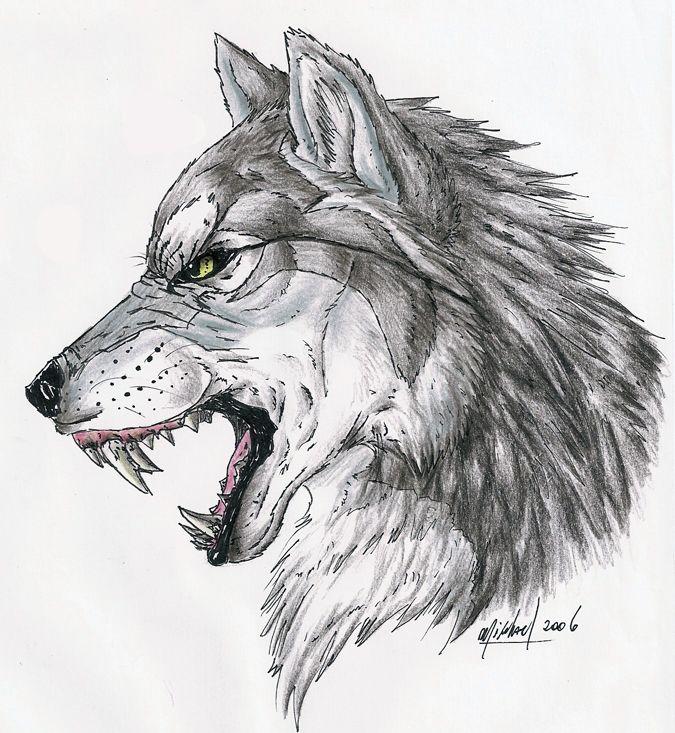 Growl By Deadhowl On Deviantart Wolf Sketch Wolf Tattoo Design Wolf Drawing
