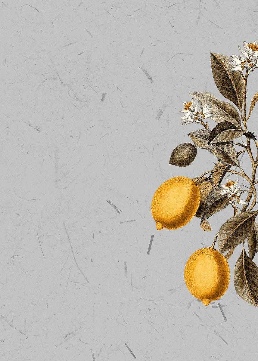 Download Premium Illustration Of Tropical Lemon On A Gray Background Floral Poster Gray Background Background
