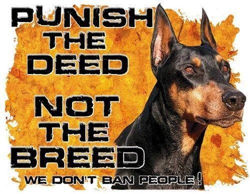 Doberman Dog Shirt Punish The Deed Not The Breed We Don T Ban