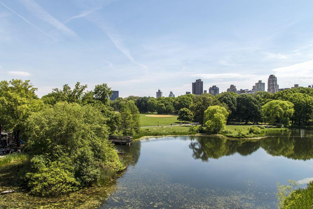 Uno de los lagos del gran #CentralPark, un pulmón dentro de la metropolitana ciudad de #NuevaYork. Disfruta cada uno de los rincones de esta increíble metrópolis. http://www.bestday.com.mx/Nueva-York-City-area/