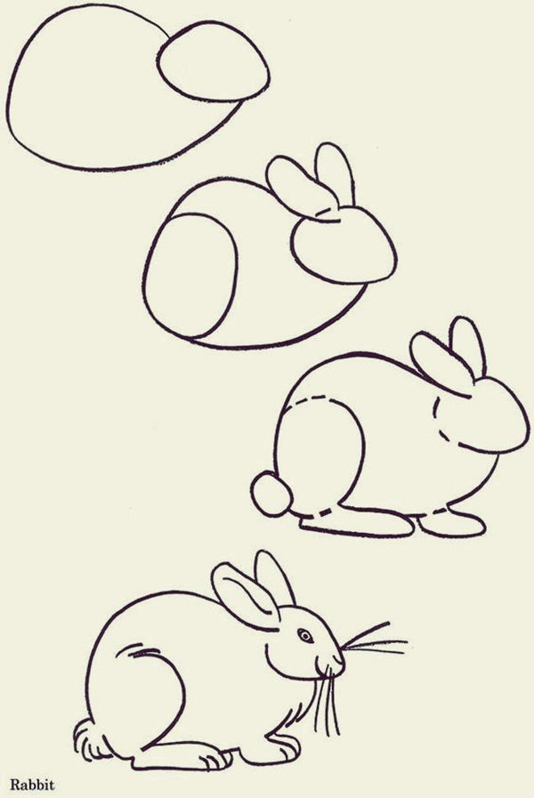 How to draw Cute Animals: 45 Examples | Cute drawings ...
